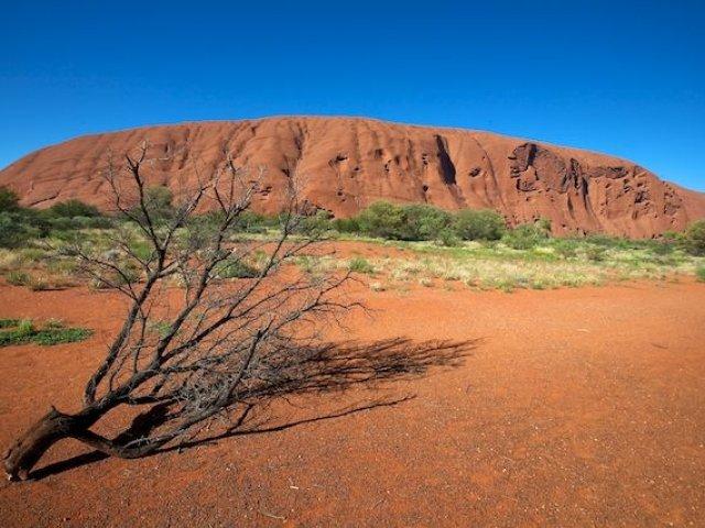 Australia Discovery 19gg