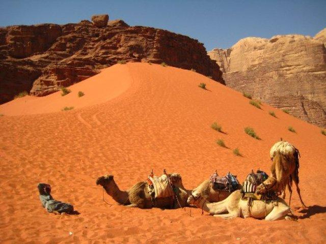 I BEDUINI DEL DESERTO CAMEL TREK