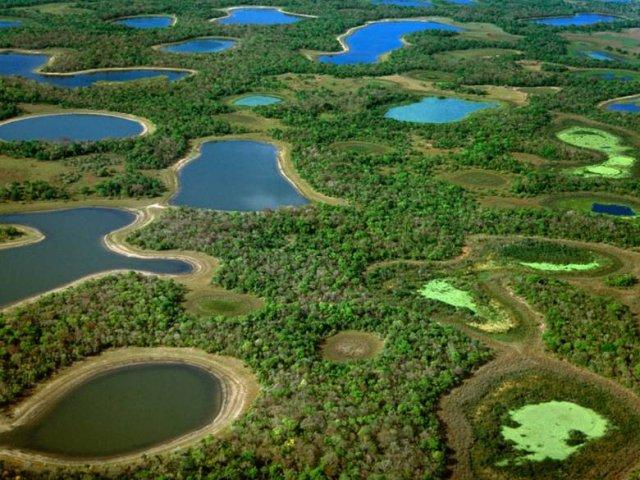 Brasile classico e Pantanal