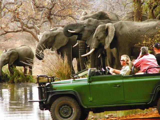 SUDAFRICA: Capodanno in Sudafrica 29 Dicembre 2020