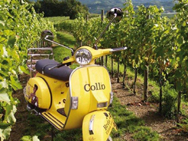 Viaggio in Friuli : Itinerario dei Vini e dei Sapori