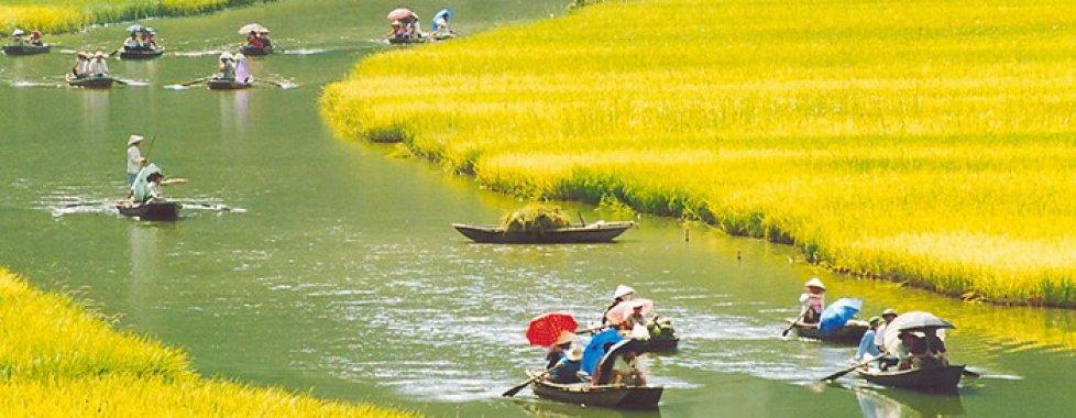 campagna vietnamita