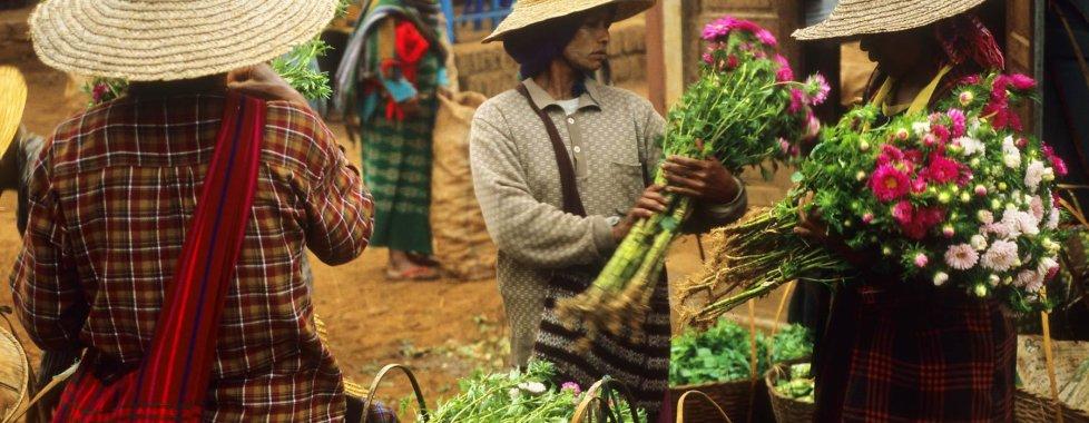Mercato Tribale