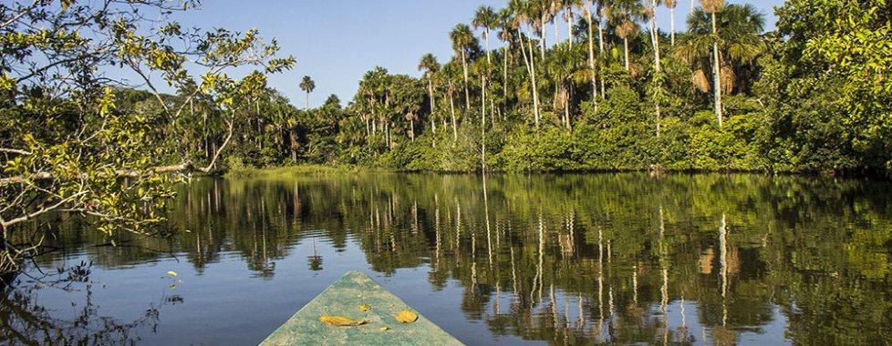 Selva Amazzonica