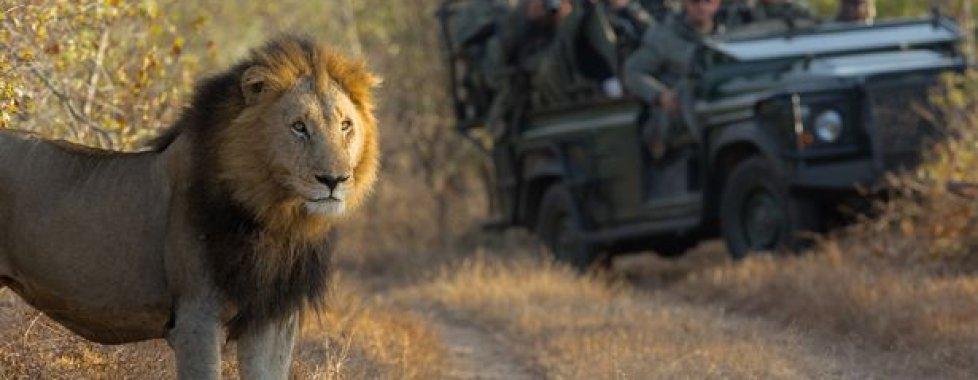 capodanno sudafrica 1